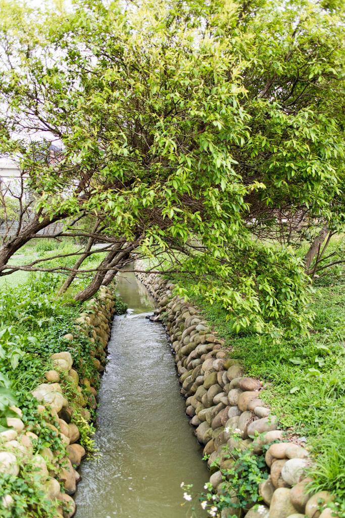 |桃園。中壢|青塘園-有如台中秋虹谷的青塘園