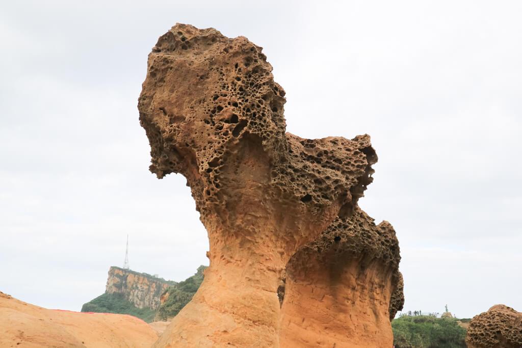 万里|野柳地质公园-旅游景点介绍