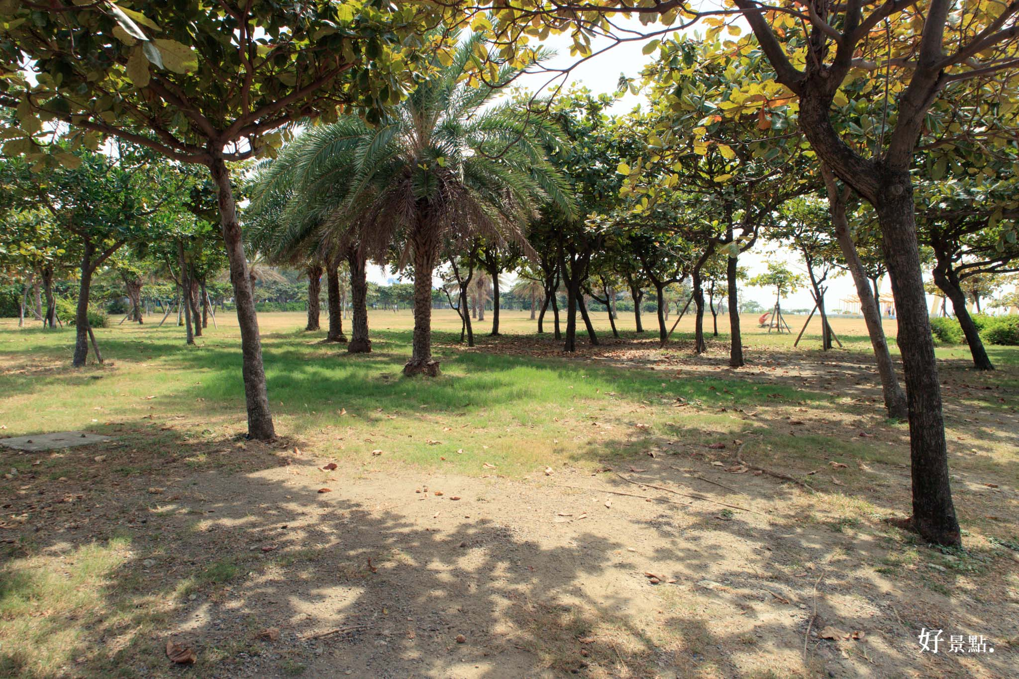 |高雄。旗津|旗津風車公園-看海、吹風、散步好地方!