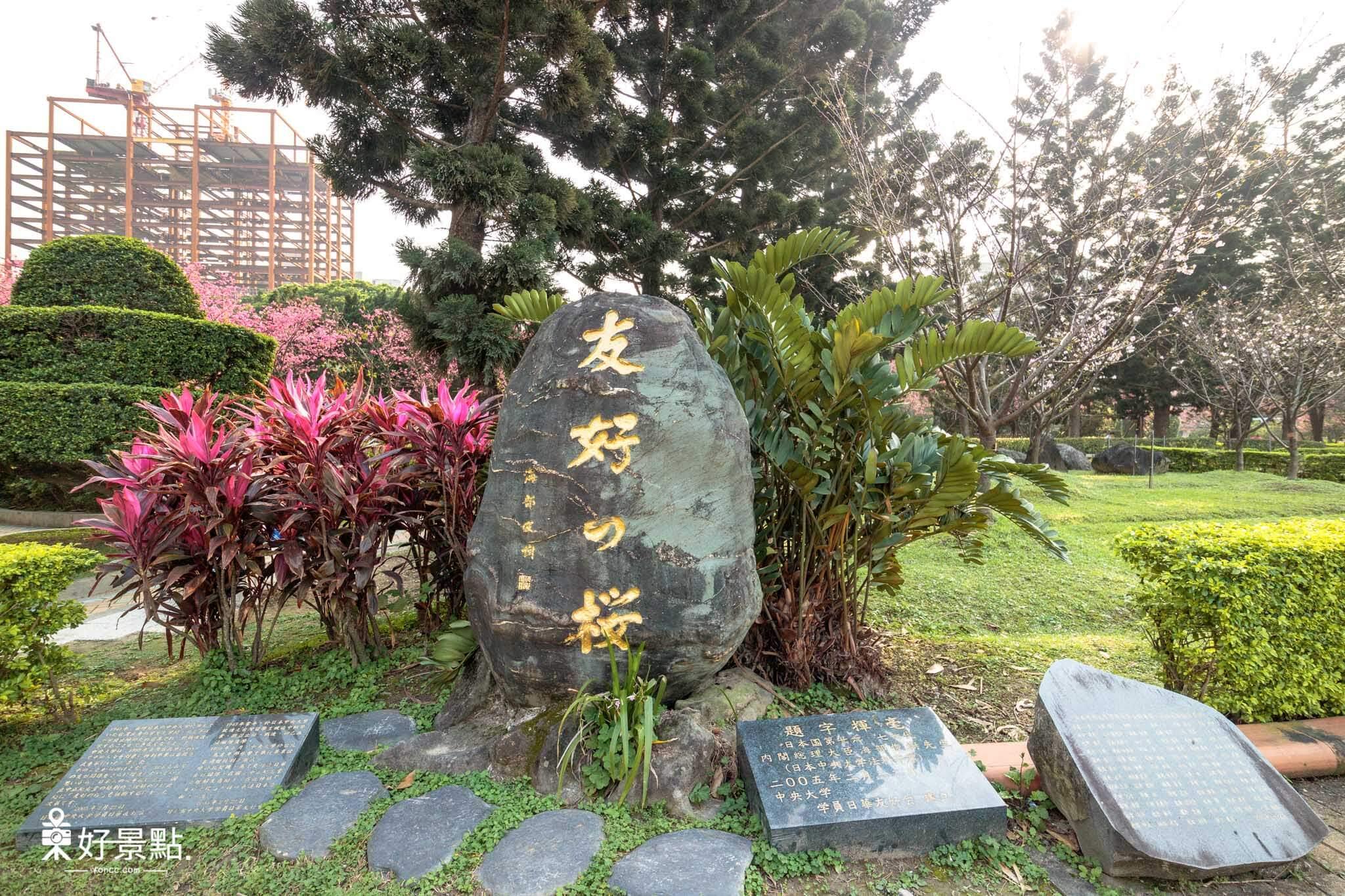 |台北。中正|2018中正紀念堂櫻花綻放-城市浪漫賞櫻