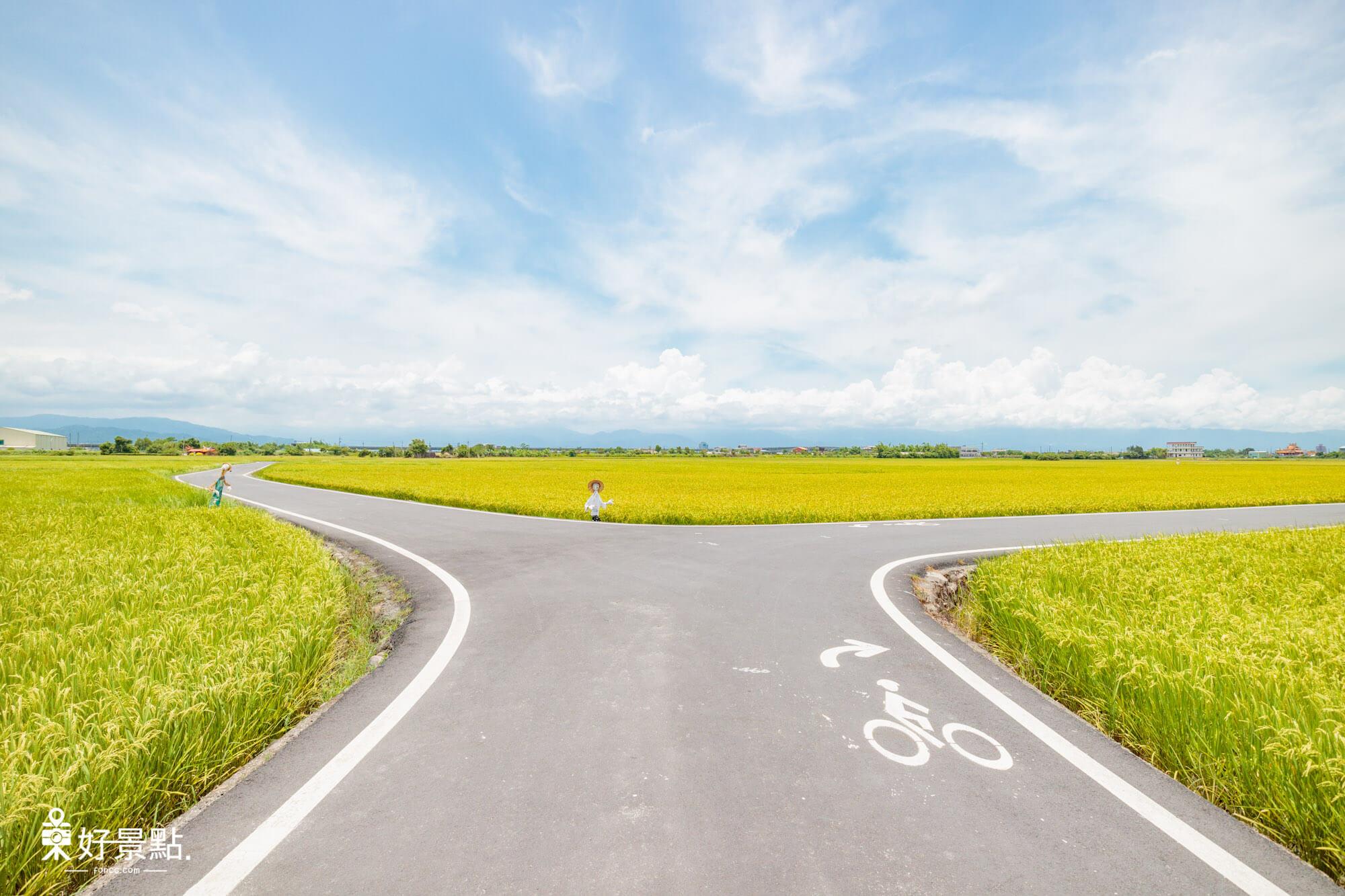 三奇伯朗大道(稻間美徑)一望無際稻田/公車搭乘方式/S型彎道