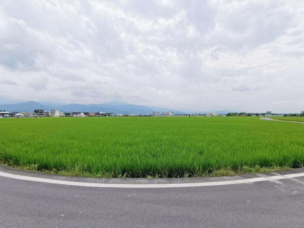 |宜蘭。冬山|三奇伯朗大道「稻間美徑」-2019熱氣球嘉年華/大片稻田/S型彎道